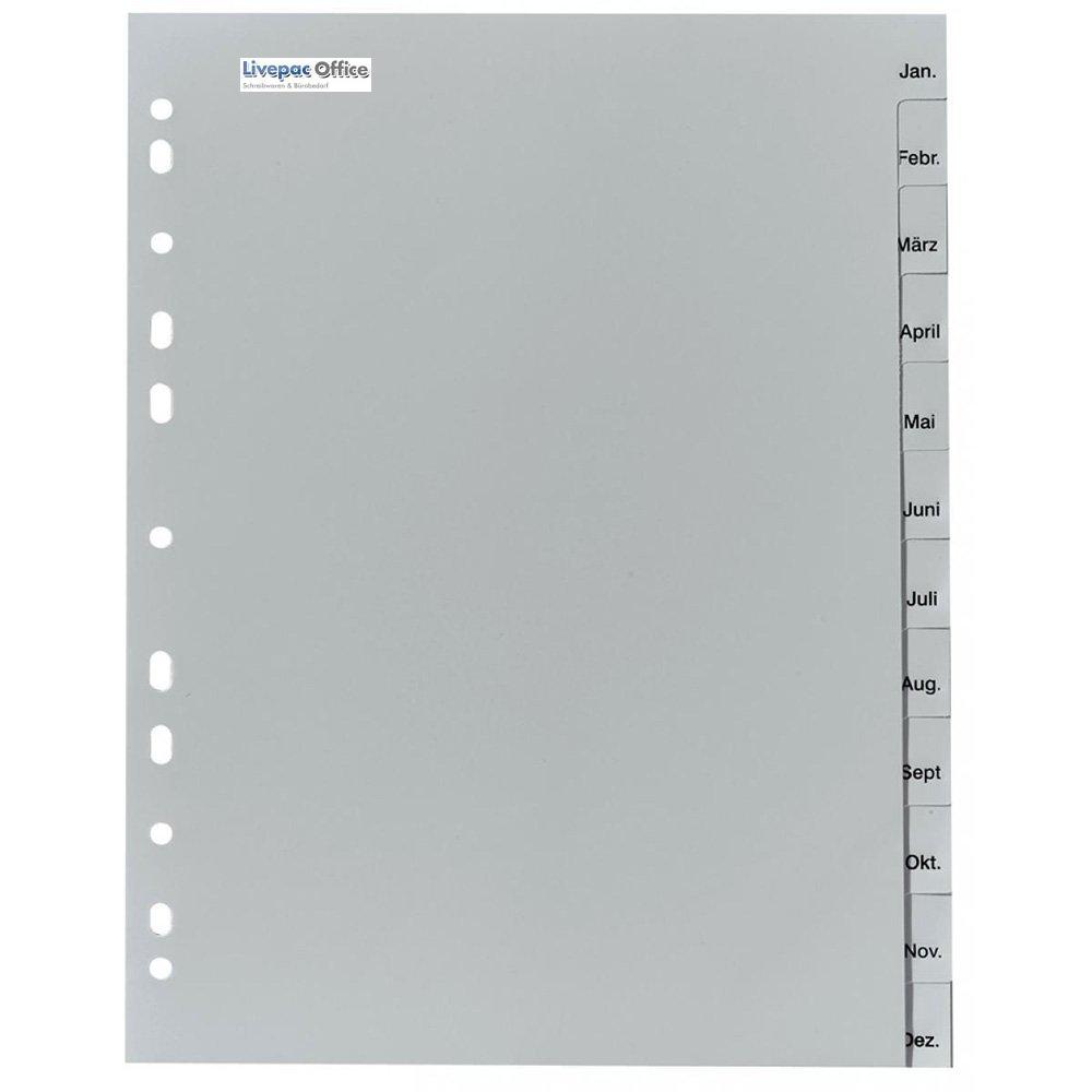 DIN A4 Farbe 12tlg. grau 5x Ordner Register Monate Jan-Dez